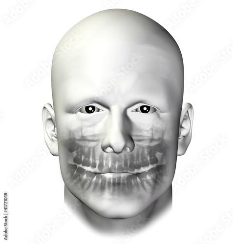 teeth dental scan adult male