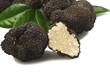 freshly harvested truffles - 41721438