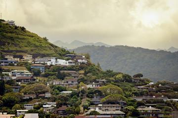 Hawaiian homes on tropical hillside