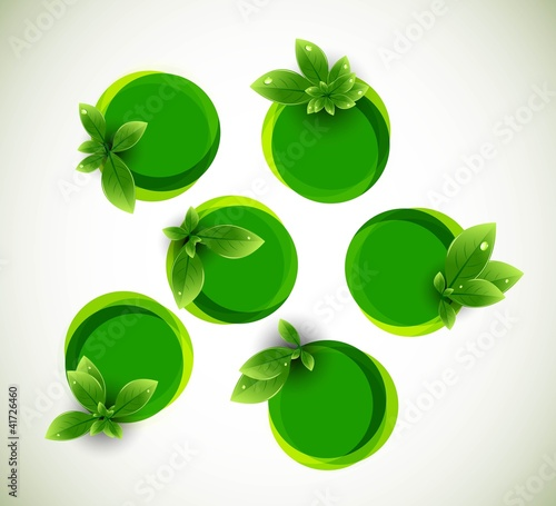 abstract nature leaf circle bubbles ecology vector