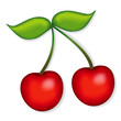 Cherries illustration, isolated on white.