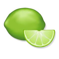 Lime, lime slice illustration, isolated on white.
