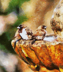 Oil Painting Mossies Afternoon Bath