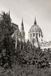 budapest parliament (monochrome)