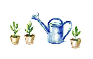 watercolor tool gardener