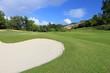 golf field .