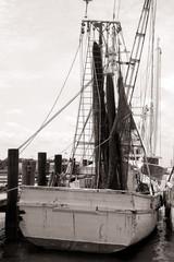 Old Shrimp Boat in Marina