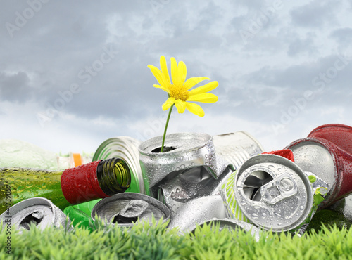 Foto op Canvas Madeliefjes Garbage with growing daisy under storm clouds