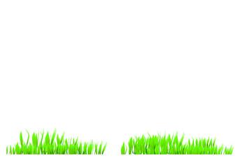 freisteller gras vektor
