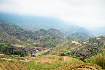 rice terraces and village