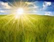 korn sun landscape