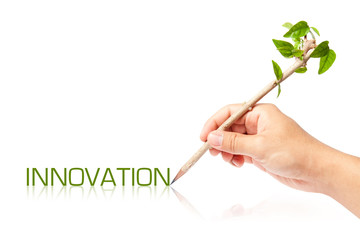 Innovation wording with creative pencil with green tree on white