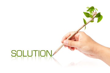 Solution wording with creative pencil with green tree on white b