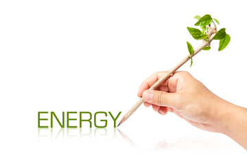 Energy wording with creative pencil with green tree on white bac