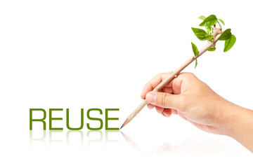 Reuse wording with creative pencil with green tree on white back