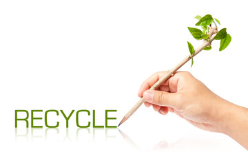 Recycle wording with creative pencil with green tree on white ba
