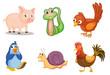 Animal series