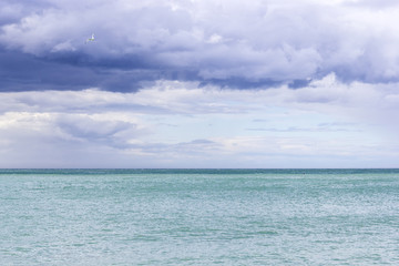 Beautiful azure sea and a gull in the cloudy blue sky