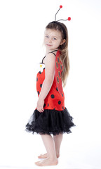 young girl in ladybug costume on white