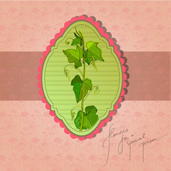 retro background with illustrated ivy