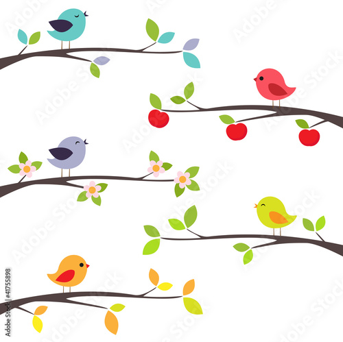 Birds on branches - 41755898
