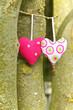 Zwei Herzen, Liebe, Hochzeit, heiraten, romantisch, gemeinsam