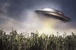 UFO hovering over a crop field - 41757409