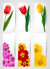 Big set of banners with spring and flowers.