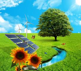 Paesaggio Ecology