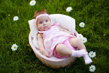 lovely baby girl in the basket
