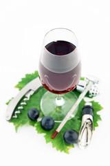dégustation souriante d'un verre de vin rouge