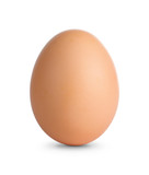 Close up of an egg isolated on white with clipping path