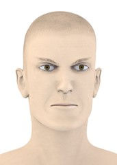 3d render of artifical mala face - angry
