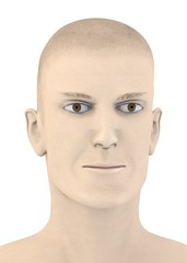3d render of artifical male face