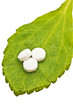 Stevia rebaudiana, Tabletten