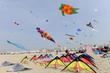 festival du cerf-volant - 41775022
