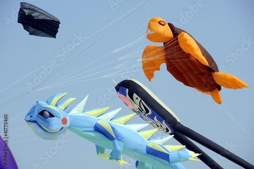 Papiers peints Aerien cerf-volants