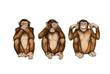 drei Affen (nichts sehen, hören, sagen)