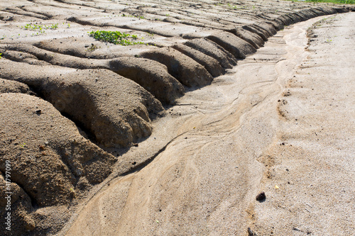 Soil erosion to overgrazing leading - 41797099
