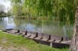 Les marais de Bourges - 41802887