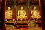 Golden Buddha in Jogyesa temple (Seoul)