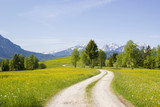 Fototapety lovely panorama in the alps in Germany