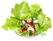salad of fresh vegetable and greenery