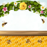 Floral background with bees and honeycombs