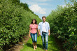 Couple in fruit orchard after summer