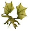 green dragon in attack