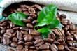 Wohlriechende Arabica-Kaffebohnen
