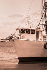 Old Shimp Boat in Florida Marina