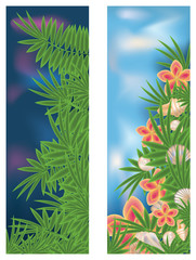 Two tropical banners, vector illustration