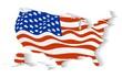 USA flag in statea